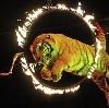 Цирки в Слободском